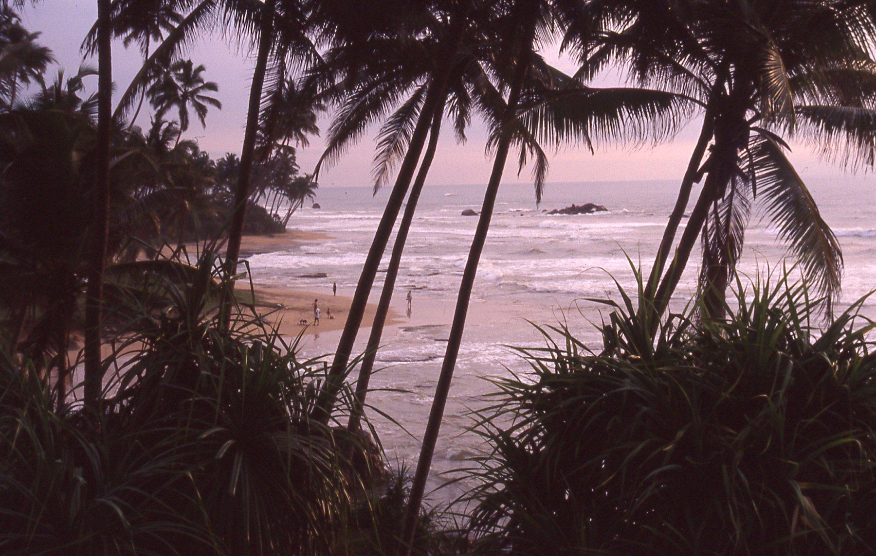 Sri lanka north Coast © JonoVernon-Powell.com