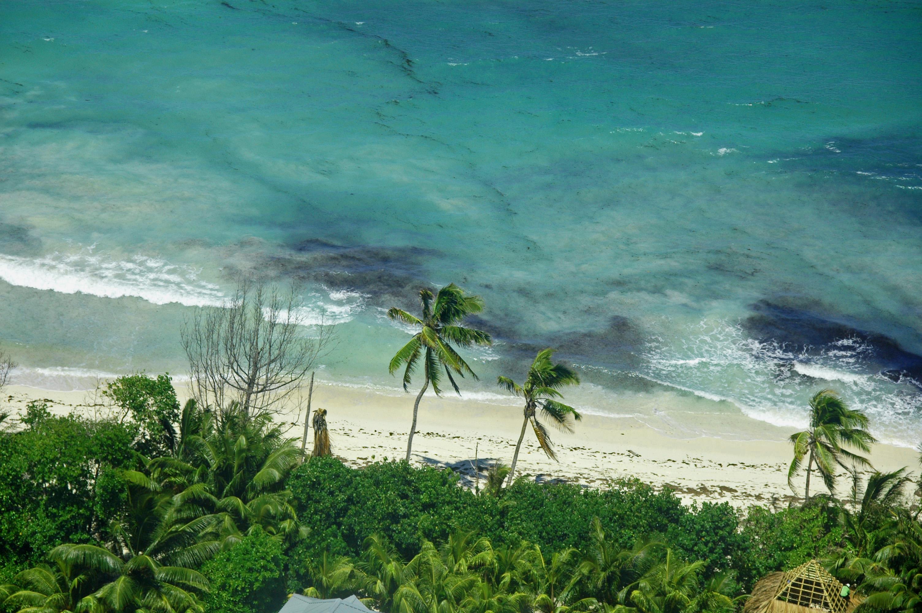 Beach scene Seychelles © JonoVernon-Powell