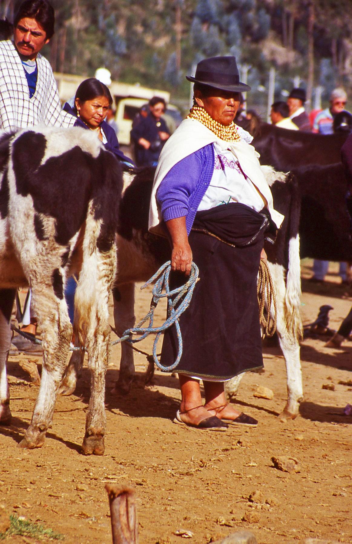 Cattle Trader lady Ecuador © JonoVernon-Powell