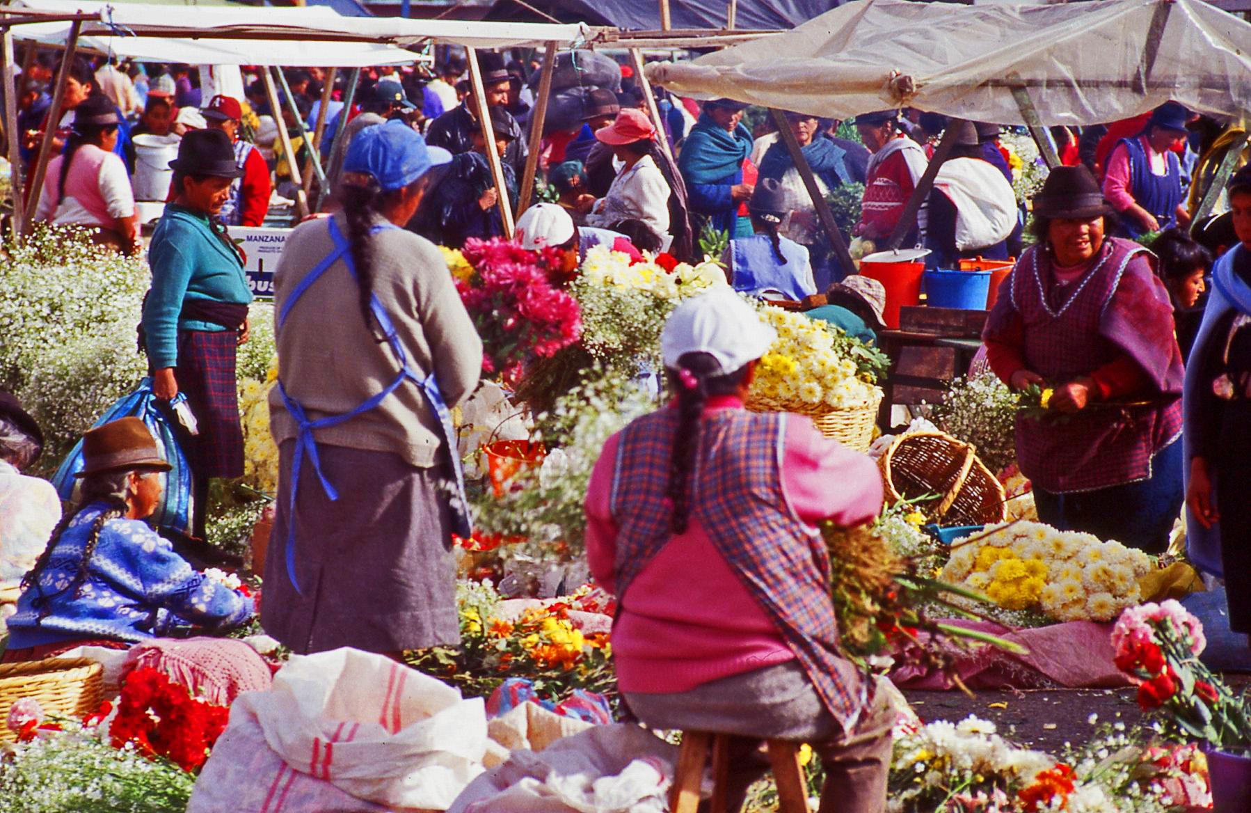 Flower Market Ecuador © JonoVernon-Powell