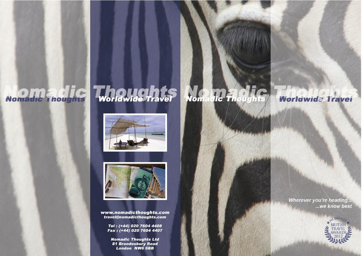 Zebra © Nomadic Thoughts (Worldwide Travel)