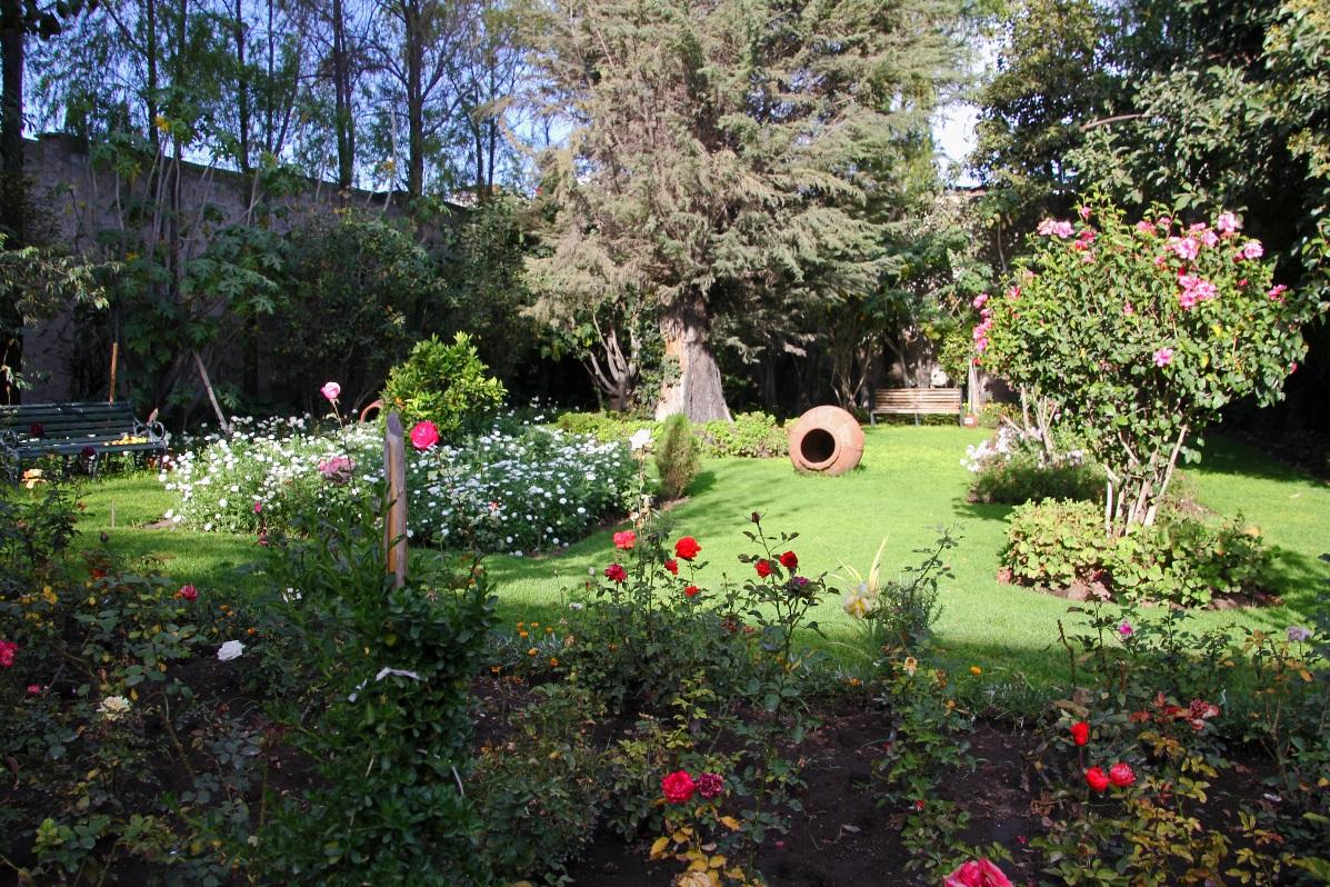 Garden © Nomadic Thoughts