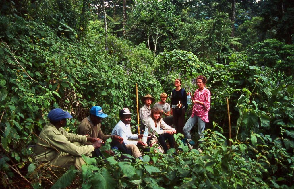 Bwindi-Gorilla-Search-Party copyright-nomadic-thoughts-worldwide-travel