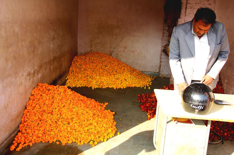 India-flower-trader-copyrig