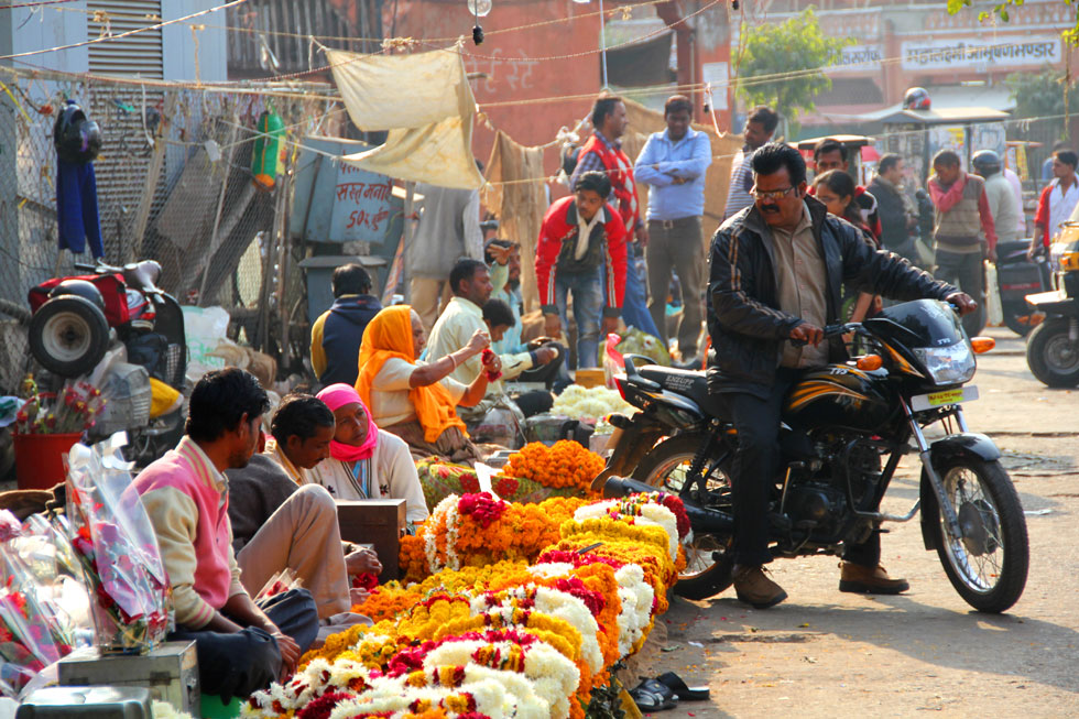 Indian-biker-viewing-flower