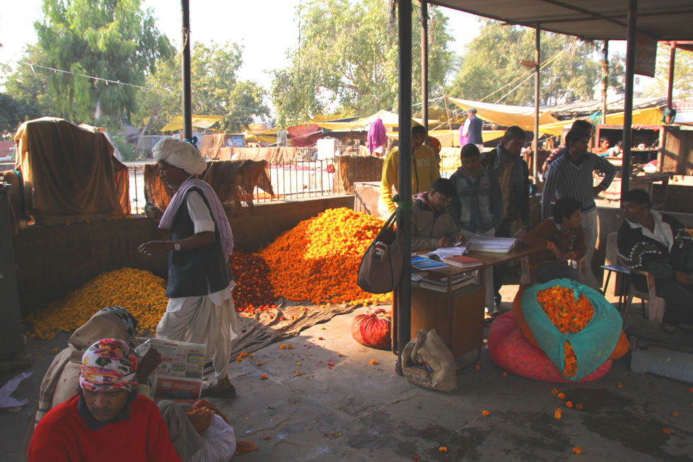 North-India-flower-market-c