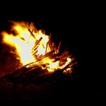 California widl-fires