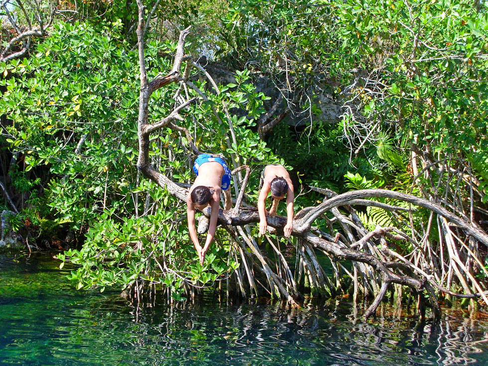 cenote-swimming-copyright-n