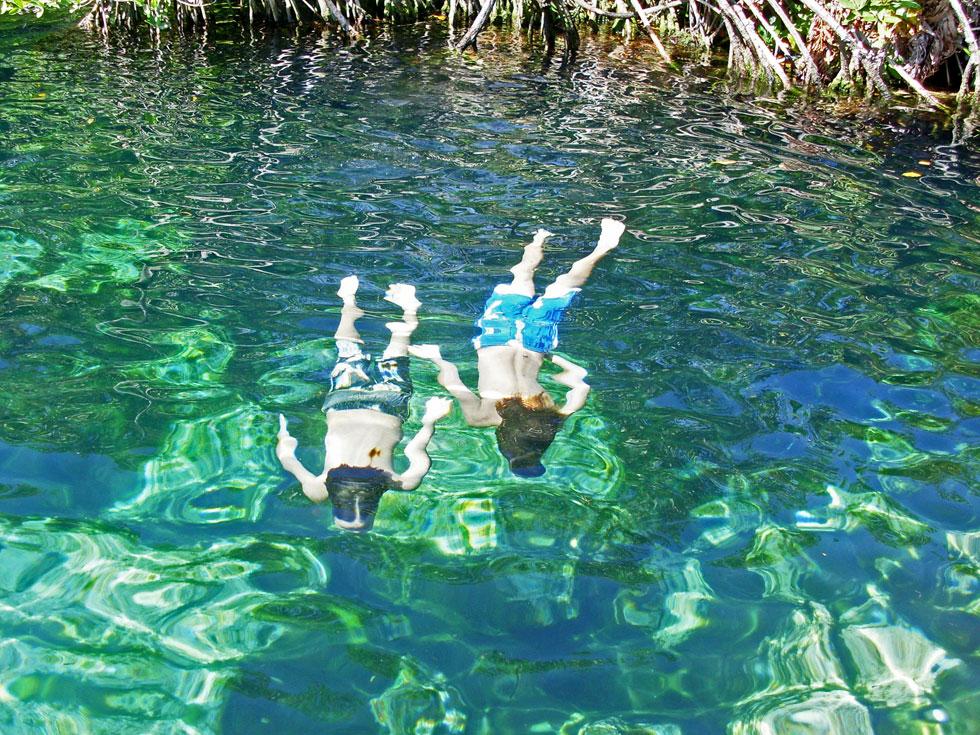 cenote-swimming-tulum-copyr