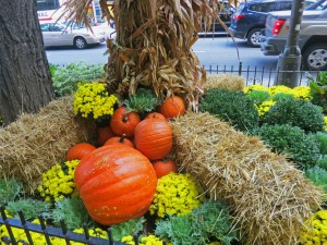 pumpkin-pavment-chicago-cop