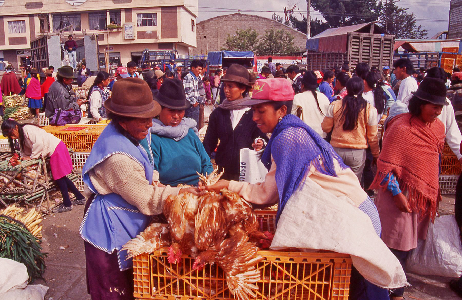 Chicken deal Ecuador © JonoVernon-Powell