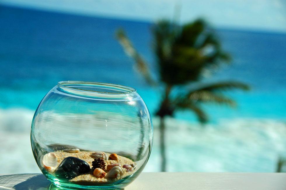 Tropical-beach-fishbowl-cop