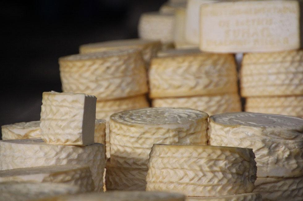 cusco-cheese-copyright-noma