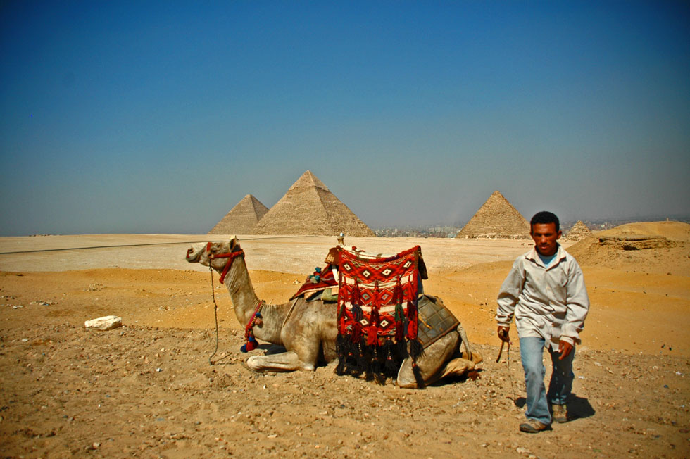 Egyptian tourist number down